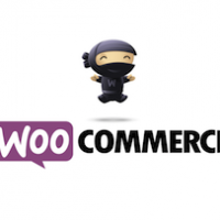 woocommerce_training